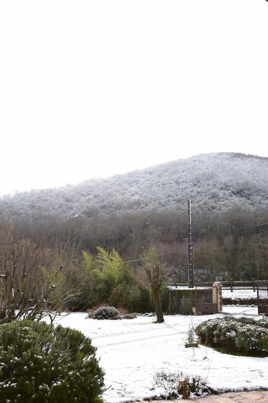 neige_1fevrier15.jpg.15062fc42c3600e9e0c