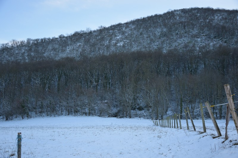 neige_3fevrier15_2.jpg.de9624f76e83cb31f