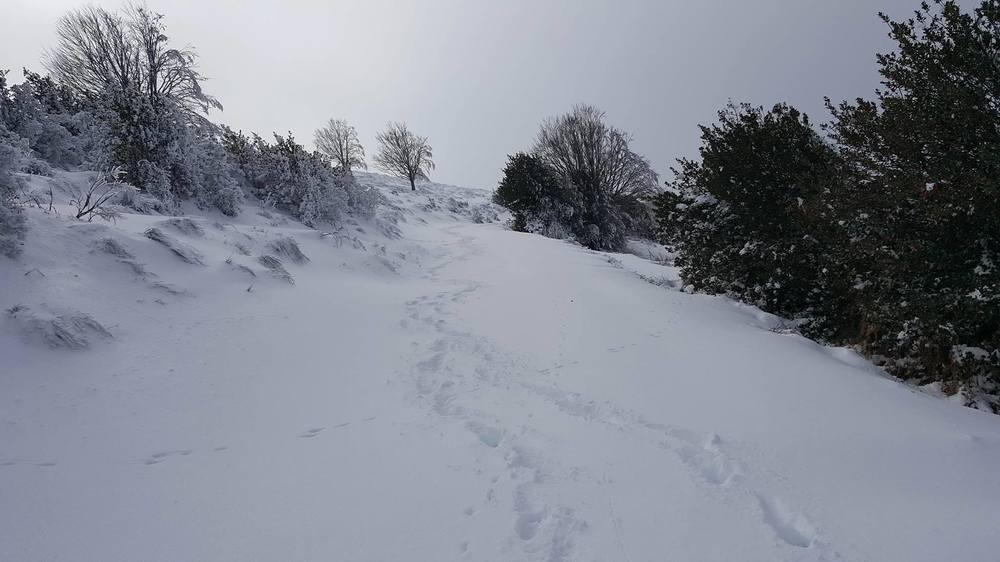 hiver17.jpg