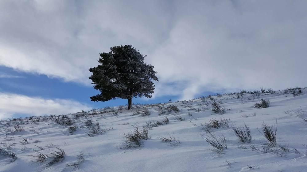 hiver3.jpg