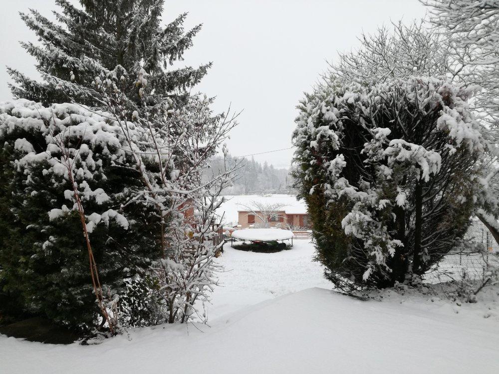neige2.thumb.jpg.613ca6729c6f8387bebe639bd3730687.jpg