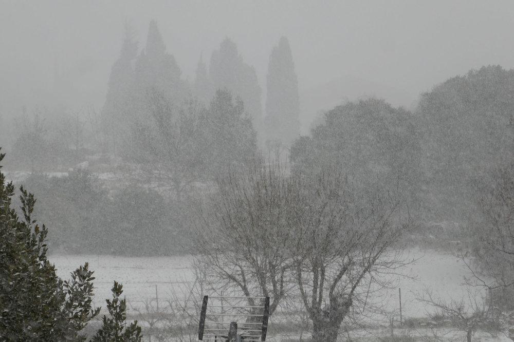 Tempête de neige CAZ 2018-02-28 -2.jpg
