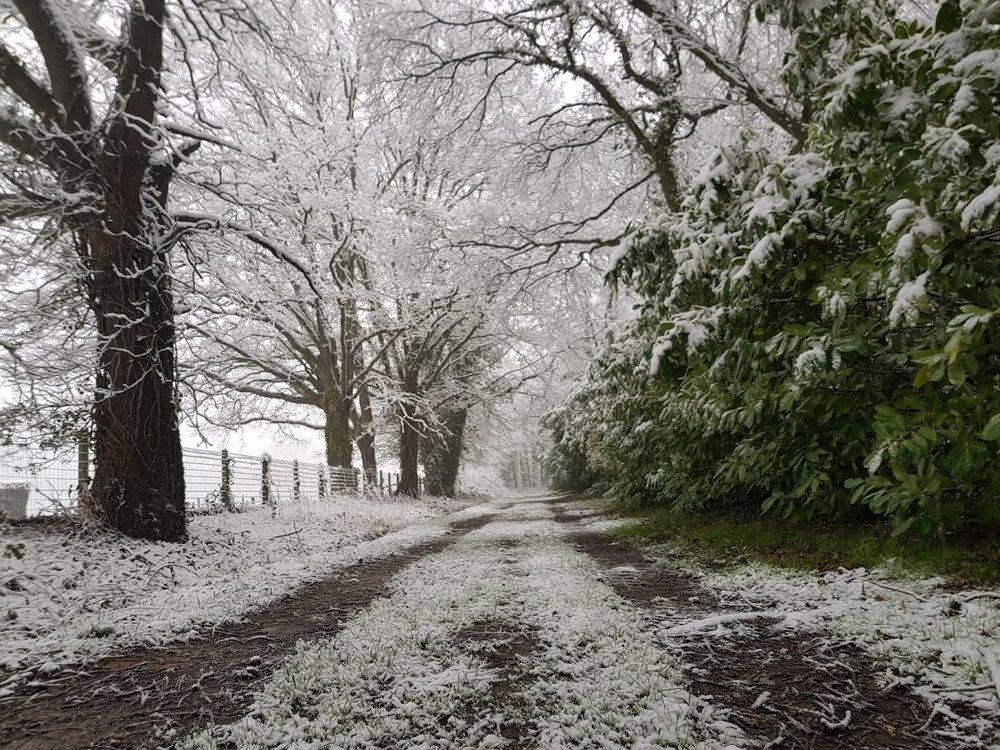 neige02.jpg