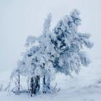 L'hiver lorrain
