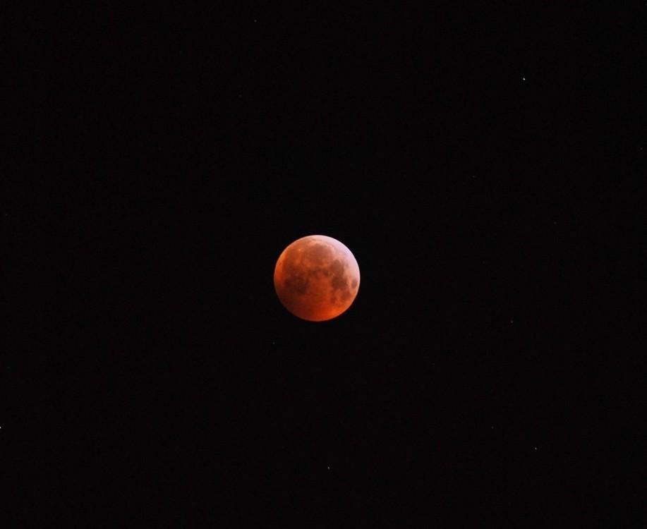 1743981305_eclipsedeLune21012019(01).thumb.jpg.1367ac9e22d4dcd1d30b08518e38ff10.jpg