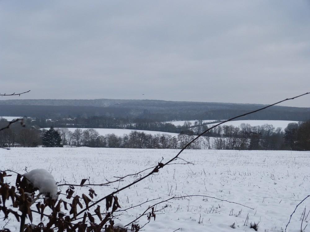 guerigny collines neige.jpg