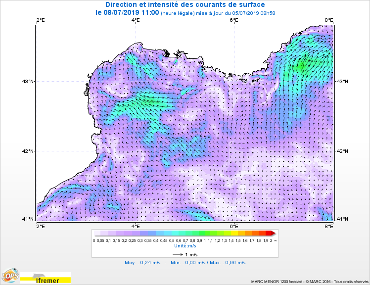 Courants_Carte-2D_Surface_Golfe-du-Lion_20190708-1100.png.741f849b1a93feac562e8fe331b628a5.png
