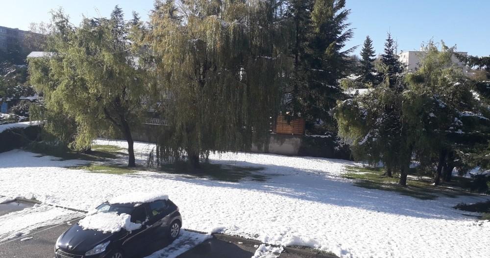 Neige à Terrenoire 15.11.2019 32.jpg