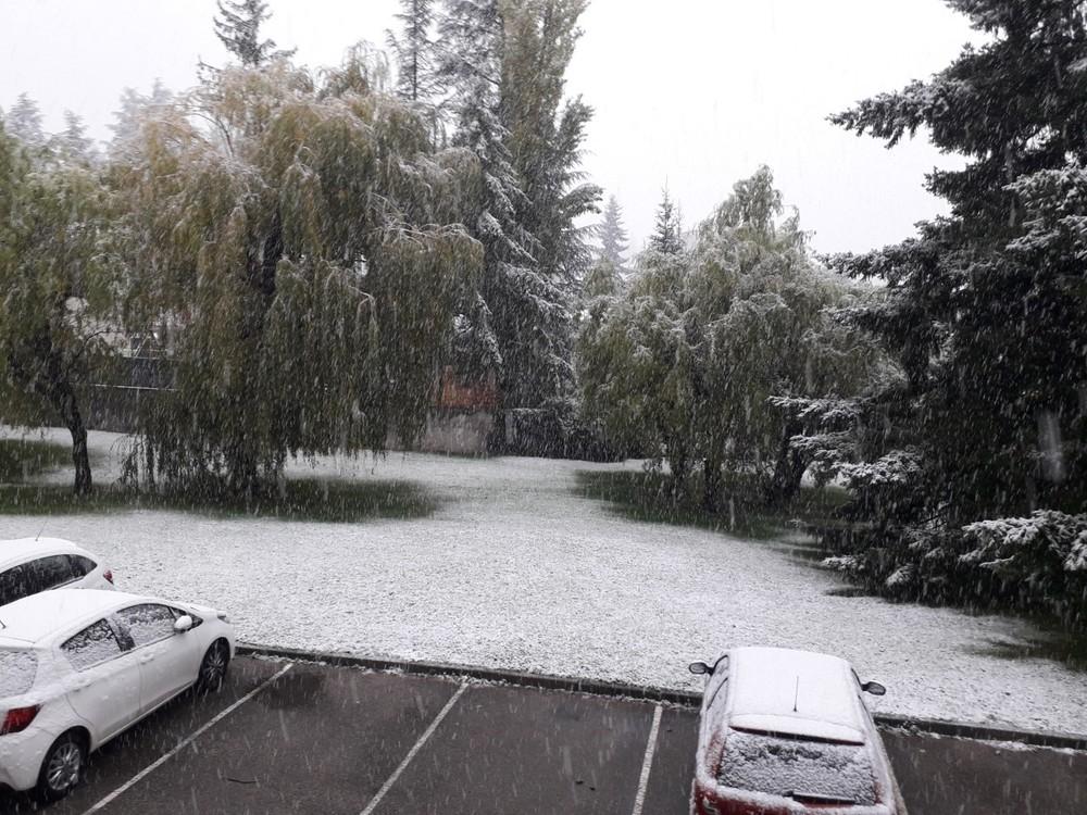 Neige à Terrenoire 14.11.2019.jpg
