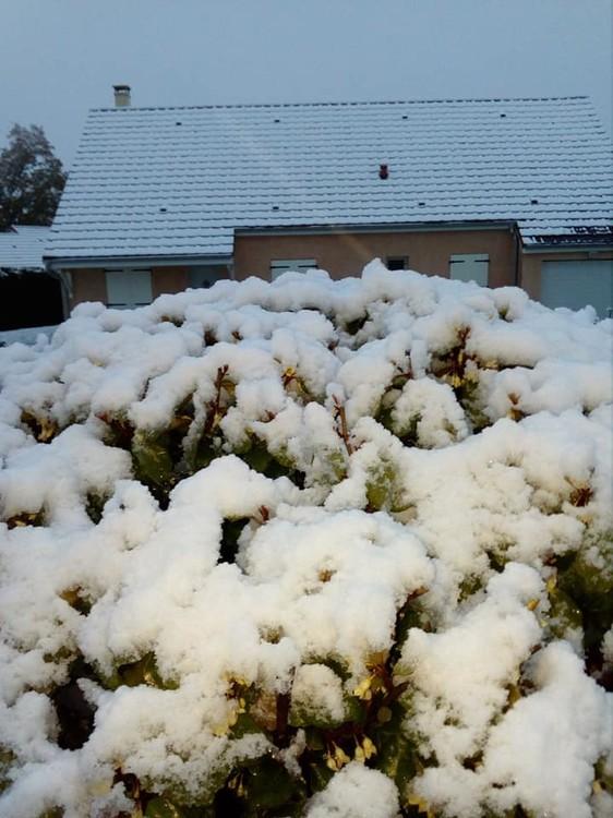 neige 2 novembre.jpg