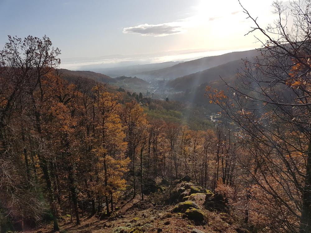 Vallée d'Autlau.jpg