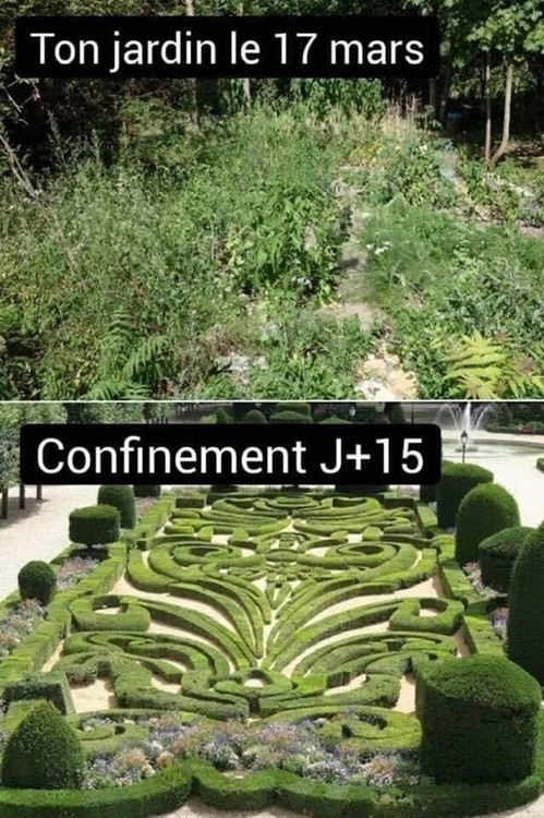 confinement.thumb.jpg.64a4cf5af88fcede560a2950ef44bb2c.jpg