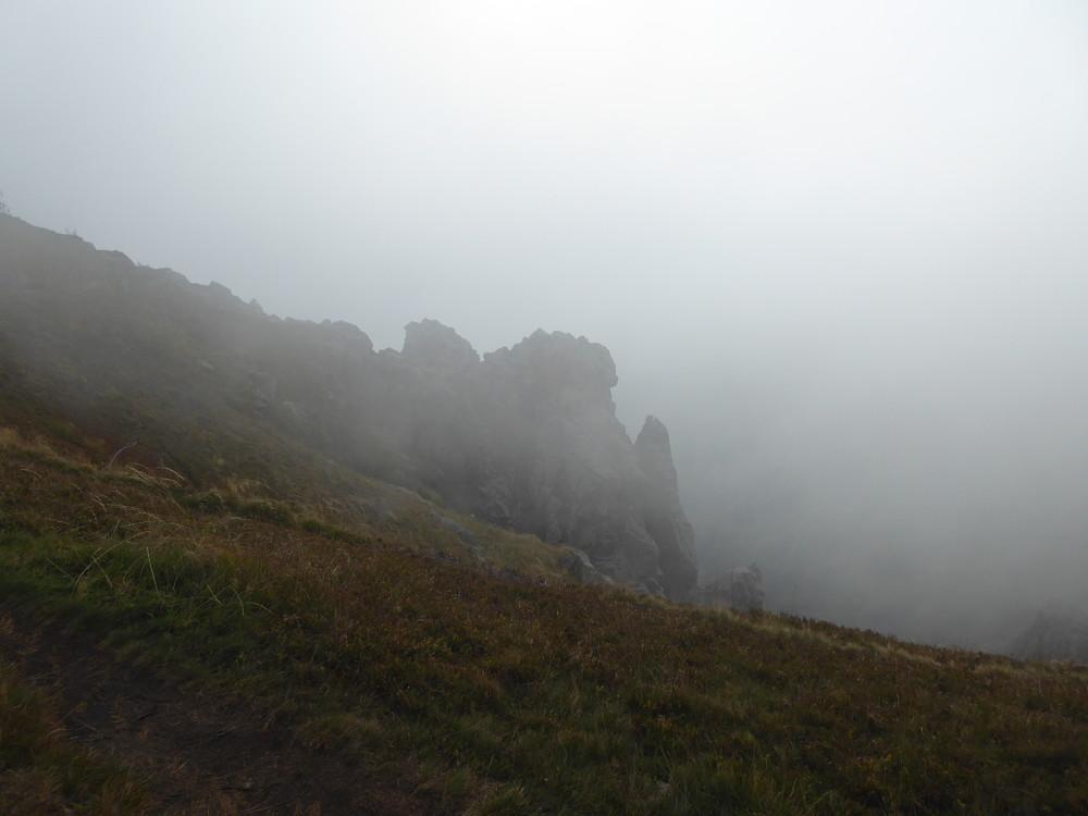 martins brouillard.JPG