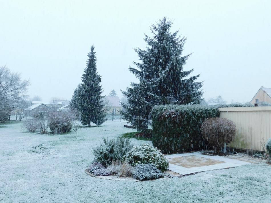 neige2.JPG.5789173462049ba47df2ce36283d5251.JPG