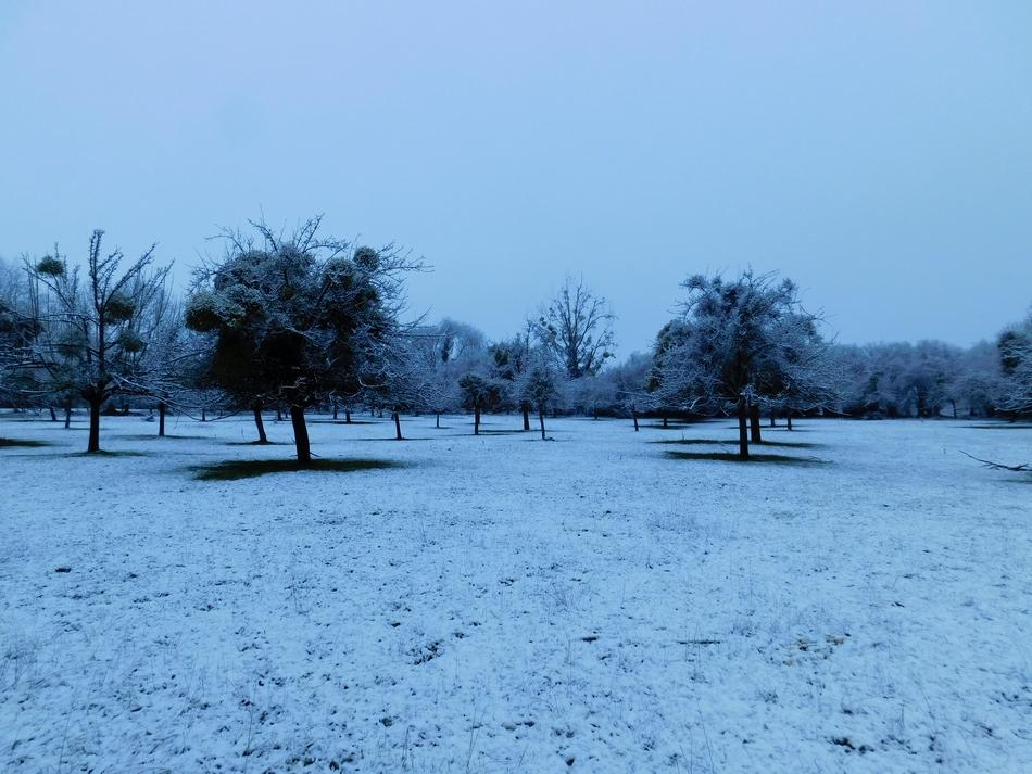 neige4.JPG.1939bc0be3d04fecbfe5ef676cd418f2.JPG