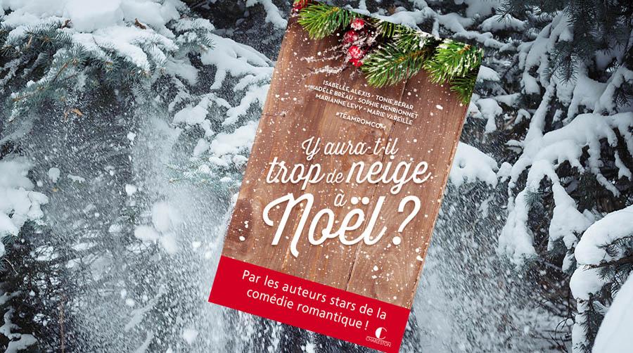 trop-de-neige-pour-noel.jpg