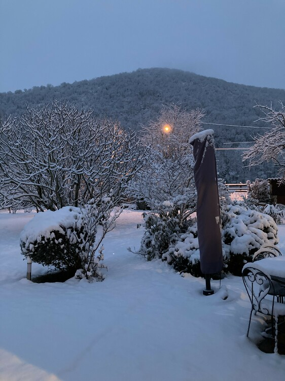 neige12.thumb.jpg.bee77522f8440253ac4967e41c174b59.jpg
