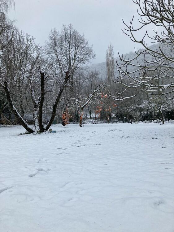 neige3.thumb.jpg.0f69b6c2c3fbbaf2620cf7374130067b.jpg
