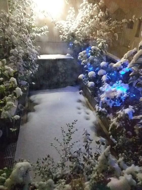 neige_16012021.jpg