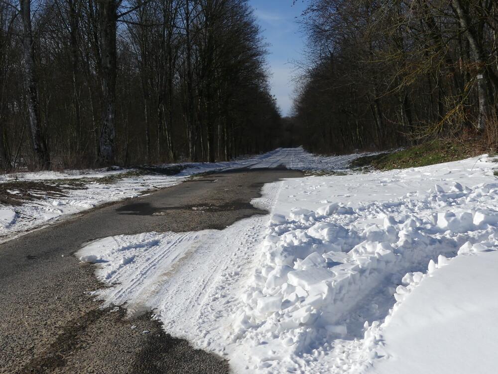 Val Houzet Haute-Marne 14 février 2021 (22).JPG