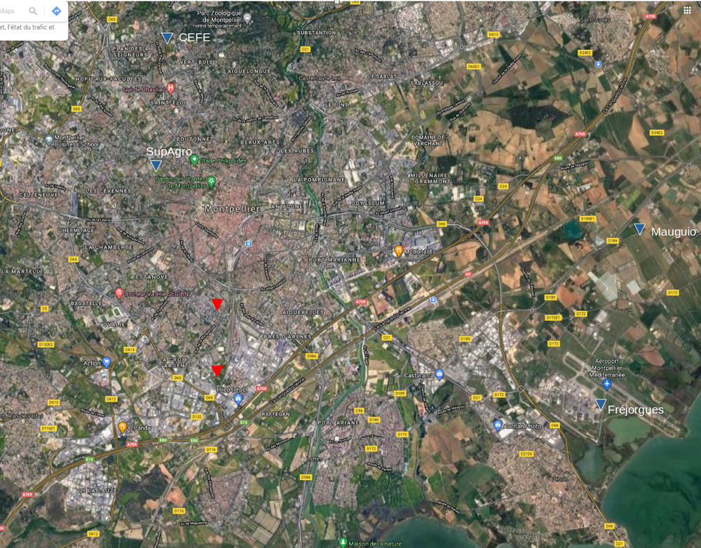montpellier.thumb.png.d29dc327a767c1f863639f9ccceb8d40.png