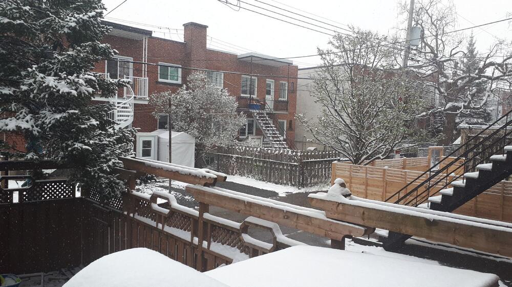 neige 21 avril 2021.jpg