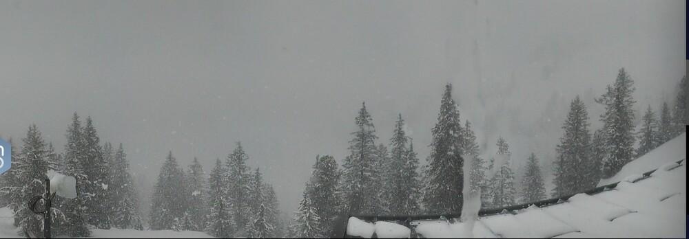 neige.thumb.jpeg.a9bd2638ced3f1df191d0bfd7084bdf9.jpeg