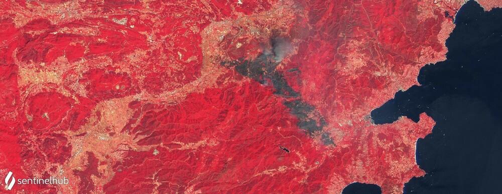 Sentinel-2 L1C image on 2021-08-17 (1).jpg