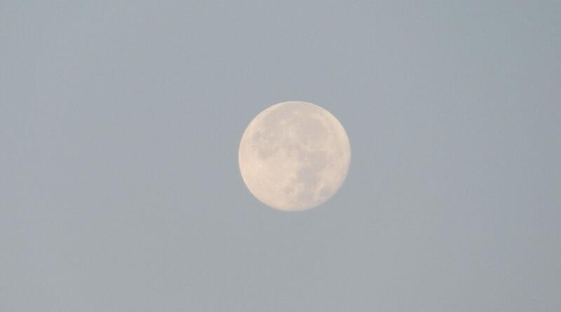 lune.JPG.b67f7ea6a41807ec7672fb196650a162.JPG